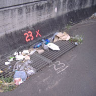 litter-on-highway